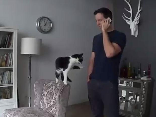 Αυτή είναι η πιο χαδιάρα γάτα στον κόσμο! (video)