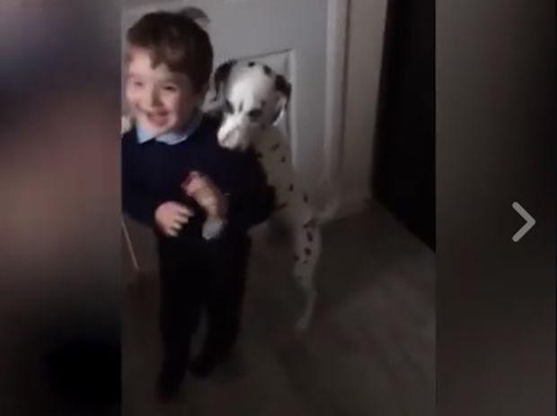 Ο σκυλάκος δεν αφήνει το αγόρι να πάει στο σχολείο! Ό,τι πιο γλυκό θα δείτε σήμερα!