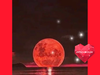 Ζώδια Σήμερα: Νέα Σελήνη στον Ταύρο